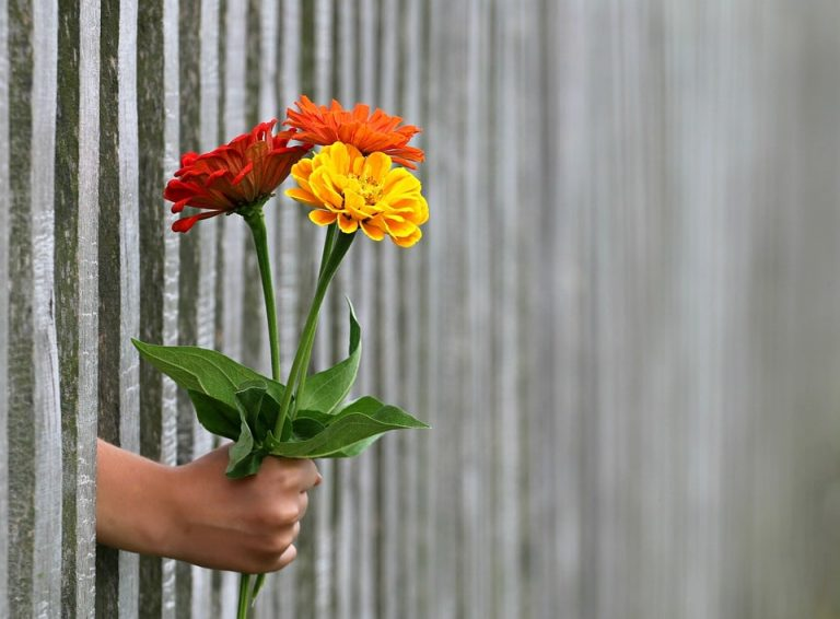 Perdonare una persona può essere un regalo